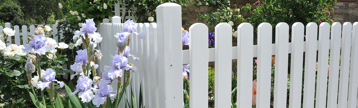 Picket fence painted white